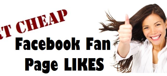 Dirt Cheap Facebok Fan Page Likes